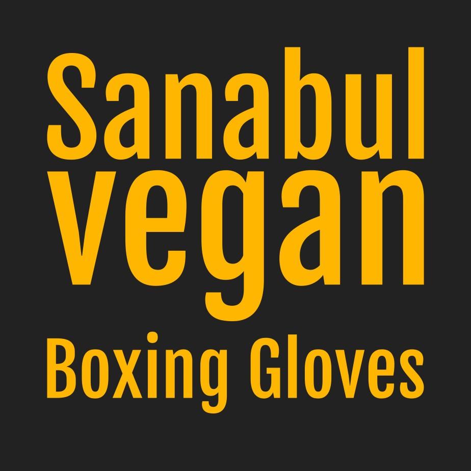 Sanabul Vegan BoxingGloves